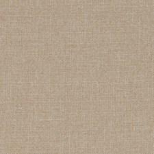 520807 DW16418 152 Wheat by Robert Allen