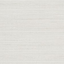 Marzipan Texture Plain Drapery and Upholstery Fabric by Trend
