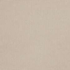 Putty Solid Drapery and Upholstery Fabric by Trend