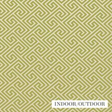 Avocado Drapery and Upholstery Fabric by Schumacher
