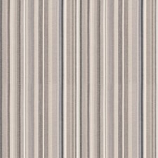 Charcoal Stripes Drapery and Upholstery Fabric by Trend
