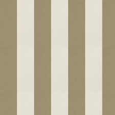 Seagrass Stripes Drapery and Upholstery Fabric by Trend