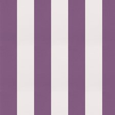 Violet Stripes Drapery and Upholstery Fabric by Trend