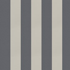 Shark Stripes Drapery and Upholstery Fabric by Trend