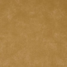 Carrara Camel Solid Drapery and Upholstery Fabric by Greenhouse