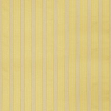 Sunshine Stripes Drapery and Upholstery Fabric by Trend