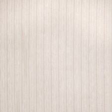 Shell Stripes Drapery and Upholstery Fabric by Trend