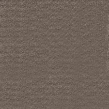 Jamoca Solid Drapery and Upholstery Fabric by Trend
