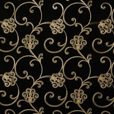 Black Embroidery Drapery and Upholstery Fabric by Trend