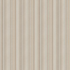 Driftwood Stripes Drapery and Upholstery Fabric by Trend