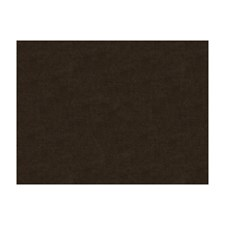Sepia Solids Drapery and Upholstery Fabric by Brunschwig & Fils