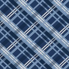 Blue Check Drapery and Upholstery Fabric by Stroheim
