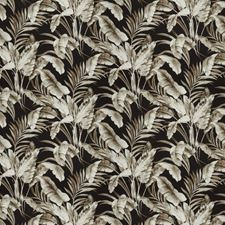 Noir Floral Drapery and Upholstery Fabric by Vervain