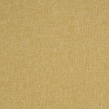 Dijon Solid Drapery and Upholstery Fabric by Trend