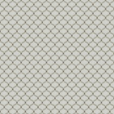 Latte Embroidery Drapery and Upholstery Fabric by Trend