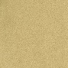 Fawn Solid Drapery and Upholstery Fabric by Greenhouse