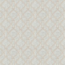 Cameo Embroidery Drapery and Upholstery Fabric by Trend