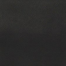 Persuasion Onyx Drapery and Upholstery Fabric by Greenhouse