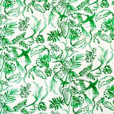 Paradise Green Drapery and Upholstery Fabric by Scalamandre