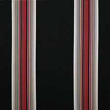 Blackwoods Stripe Drapery and Upholstery Fabric by Pindler