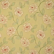 Goldenrod Drapery and Upholstery Fabric by Kasmir