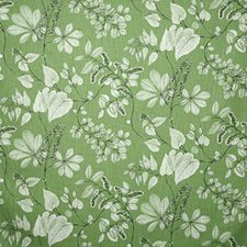 Meadow Traditional Drapery and Upholstery Fabric by Pindler