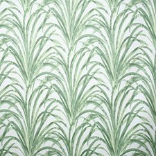 Grass Traditional Drapery and Upholstery Fabric by Pindler