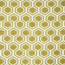 Lemongrass Contemporary Drapery and Upholstery Fabric by Pindler