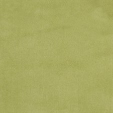 Kiwi Solid Drapery and Upholstery Fabric by Greenhouse