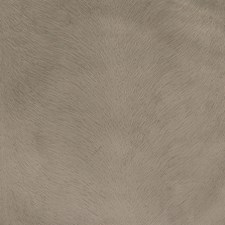 Truffle Solid Drapery and Upholstery Fabric by Greenhouse