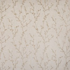 Papyrus Floral Drapery and Upholstery Fabric by Greenhouse