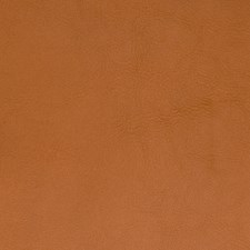 Spice Solid Drapery and Upholstery Fabric by Greenhouse
