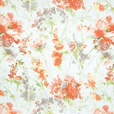 Nude Floral Drapery and Upholstery Fabric by Greenhouse