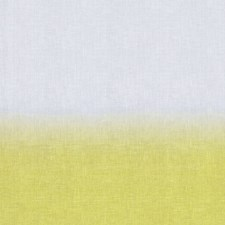 Lemon Drapery and Upholstery Fabric by Scalamandre