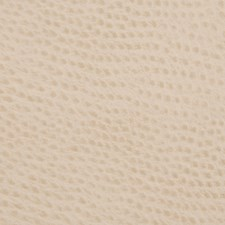 Beige Animal Skins Drapery and Upholstery Fabric by Kravet