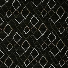 Ebony Ethnic Drapery and Upholstery Fabric by Pindler
