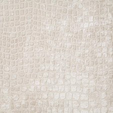 Glace Ethnic Drapery and Upholstery Fabric by Pindler