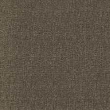 Sable Drapery and Upholstery Fabric by Kasmir