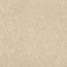 Beige/Wheat Solids Drapery and Upholstery Fabric by Kravet