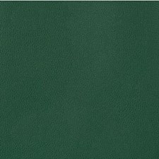 Juniper Solid Drapery and Upholstery Fabric by Kravet