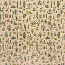Botanica Print-Stone Botanical Drapery and Upholstery Fabric by Lee Jofa
