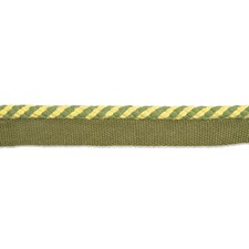 Cord Without Lip Basil Trim by Brunschwig & Fils