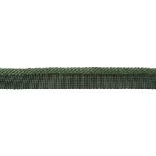 Cord Without Lip Fern Trim by Brunschwig & Fils