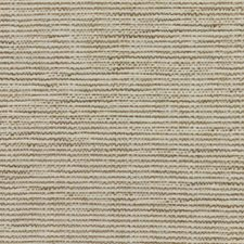 Travertine Drapery and Upholstery Fabric by RM Coco