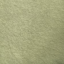 Sage Metallic Drapery and Upholstery Fabric by Kravet