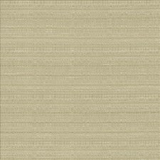 Silt Drapery and Upholstery Fabric by Kasmir
