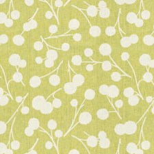 Citron Botanical Drapery and Upholstery Fabric by Kravet