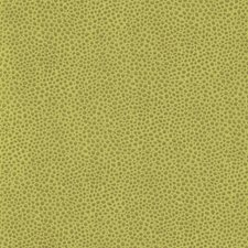 Kiwi Skins Drapery and Upholstery Fabric by Kravet