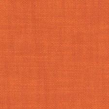 Kumquat Drapery and Upholstery Fabric by Scalamandre