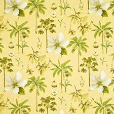 Cornsilk Drapery and Upholstery Fabric by Kasmir
